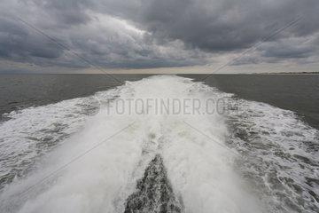 Hoernum  Deutschland  Kielwasser hinter der MS Adler-Express bei Sylt