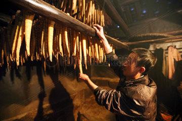 #CHINA-GUIZHOU-ECONOMY-BAMBOO SHOOT-HARVEST (CN)