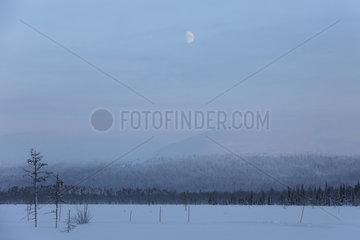 Aekaeskero  Finnland  Schneelandschaft bei Mondschein