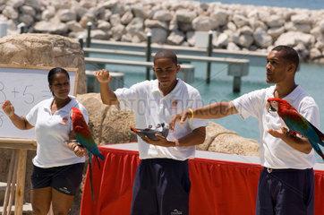 Puerto Plata  Dominikanische Republik  Vogelshow im Ocean World