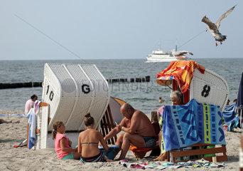 Kuehlungsborn  Deutschland  Moewe im Anflug auf einen von Menschen besetzten Strandkorb