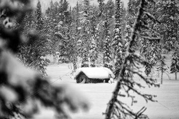 Aekaeskero  Finnland  eingeschneite Holzhuette vor einem Nadelwald