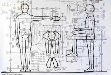 Posen  Polen  Schema des Bewegungsradius bei der School of Form