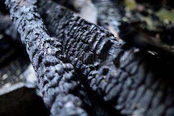Chemnitz  Deutschland  verbrannte Holzbalken in einem verlassenen Gebaeude