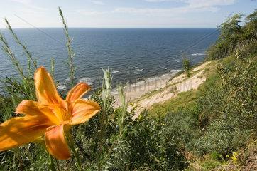 Wollin  Polen  Steilkueste an der Ostsee