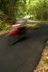 Down hill S Bend in asphalt road going through a green bamboo forest with motorbike motion blur.