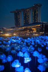 Singapur  Republik Singapur  Lichtinstallationen in Marina Bay