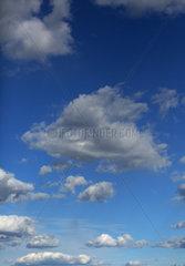 Hoppegarten  Deutschland  Cumuluswolken