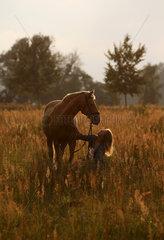 Brieselang  Deutschland  Maedchen hockt auf einer Wiese vor ihrem Pferd und schaut es liebevoll an