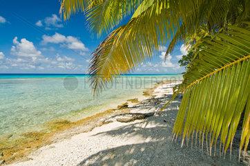 Avatoru  Franzoesisch-Polynesien  Strand auf dem Rangiroa-Atoll