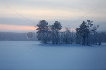 Aekaeskero  Finnland  Winterlandschaft bei Daemmerung