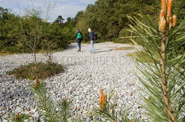 Mukran  Deutschland  Besucher in den Feuersteinfeldern auf der Schmalen Heide