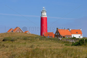De Cocksdorp  Niederlande  Leuchtturm von De Cocksdorp auf der Insel Texel