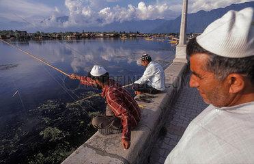 Srinagar  Indien  Maenner angeln am Dal-See