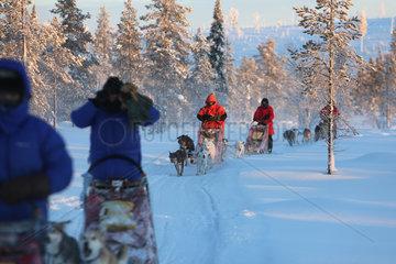 Aekaeskero  Finnland  Menschen machen eine Fahrt mit Hundeschlitten