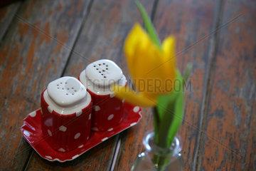 Berlin  Deutschland  Salz- und Pfefferstreuer mit einer Blume auf einem Tisch