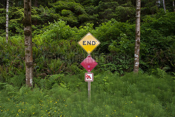 Dead end sign posted at edge of woods