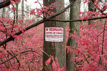 No trespassing sign posted on tree trunk