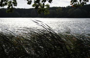 Posen  Polen  Naherholungsgebiet an einem See im Stadtgebiet von Posen