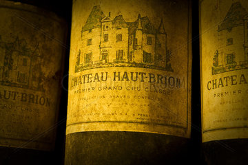 Dusty label of old wine bottle  close-up