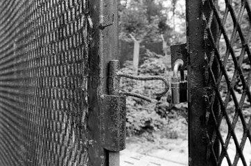 Zarrentin  DDR  geoeffneter Grenzzaun im Wald