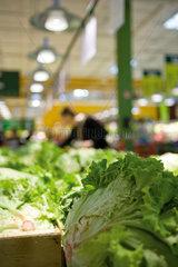 Head of romaine lettuce  produce department of supermarket