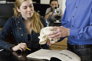 Teacher showing skull to student in anatomy class