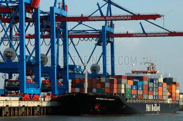 Hamburg  Containerterminal im Hambuger Hafen