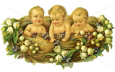 Babies im Nest  Poesiebild  1890