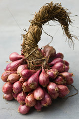 Bunch of shallots