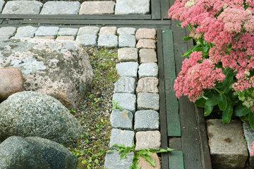 Flowering sedum in rock garden