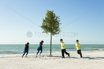 Children playing chase around tree growing on beach
