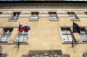 Fahne der Slowakei