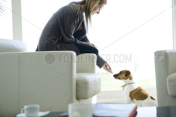 Woman letting dog sniff her hand