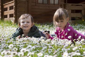 Kinder auf einer Blumenwiese