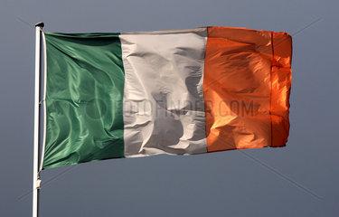 Iffezheim  Deutschland  Nationalfahne von Irland weht im Wind