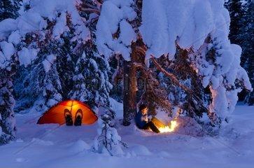 Mann sitzt neben seinerm erleuchtetem Zelt unter einem Baum am Lagerfeuer  Hedmarksvidda  Hedmark Fylke  Norwegen  Dezember