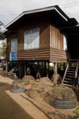 Laoten trainieren ihre Haehne fuer den Hahnenkampf / Pakxe / Laos / SUEDOSTAS