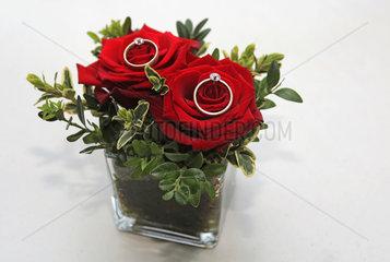 Buckow  Deutschland  zwei goldene Ringe auf roten Rosen