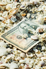 One-million dollar bill half buried in seashells
