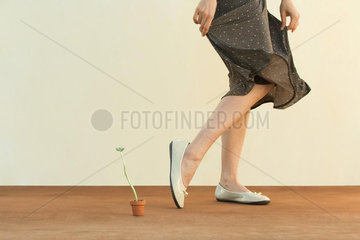 Woman walking beside potted plant  holding skirt  cropped view