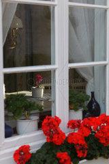 Marstrand  Schweden  Blick durch ein Fenster auf den Kuechentisch