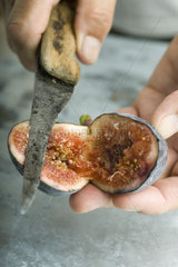 Cutting a ripe fig