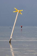 Cuxhaven  Deutschland  Mann laeuft allein durch das Wattenmeer