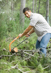Man doing yardwork  cutting up tree