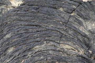 verschiedenartige Lavaformationen  Insel Isabela  Galapagos  Unesco Welterbe  Ecuador  Suedamerika