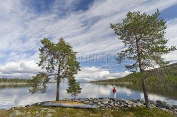 Mann angelt am See Rogen  Naturreservat Rogen  Haerjedalen  Schweden  August