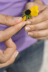 Picking petals from flower