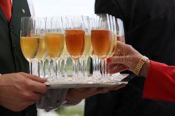 Iffezheim  Deutschland  Glaeser mit Champagner