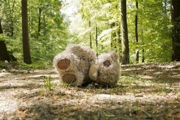 Stoffteddy liegt verlassen auf einem Waldweg